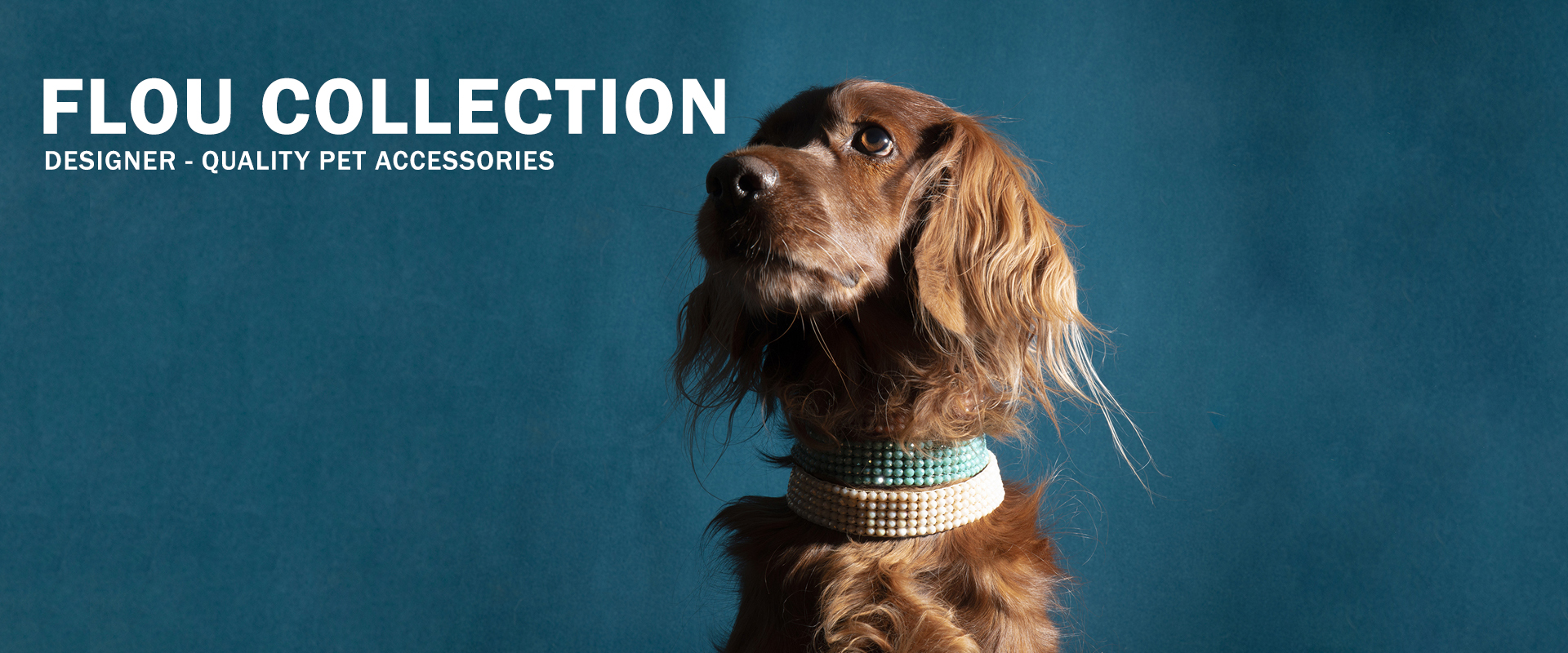 Flou Collection | Designer-quality pet accessories by zikos