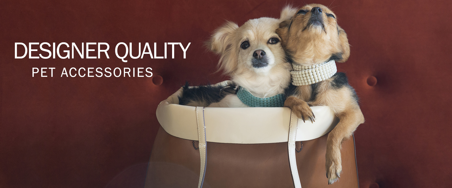 Designer-quality pet accessories