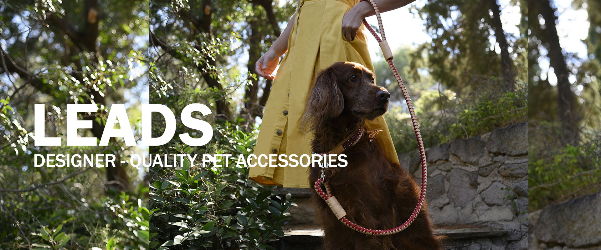 Leads | Designer-quality pet accessories by zikos