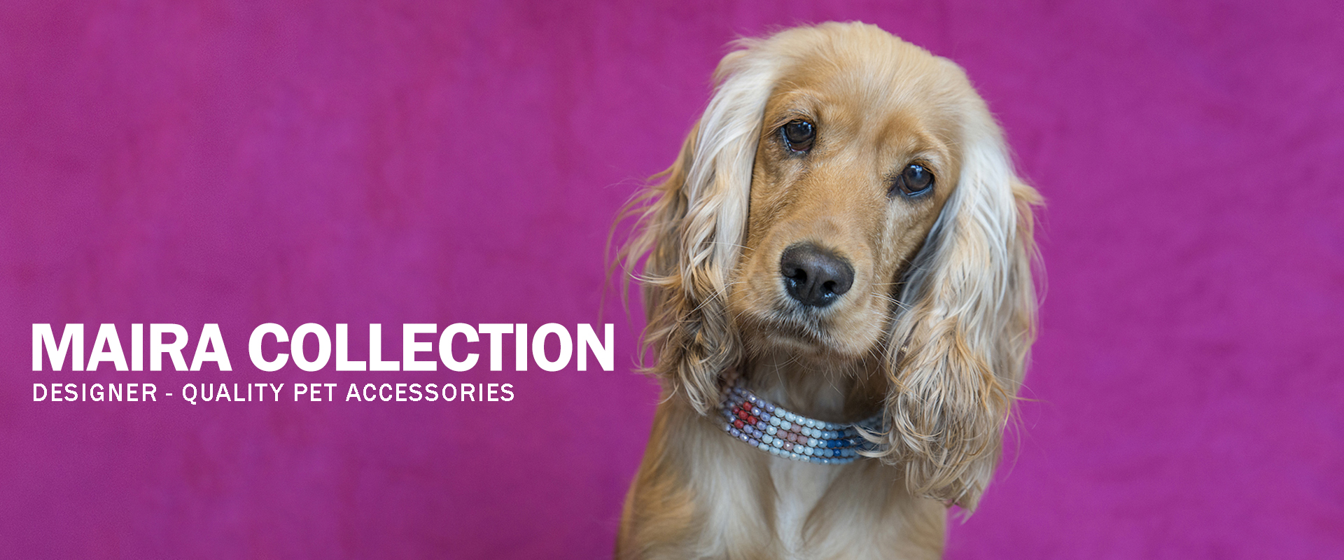 Maira Collection   Designer-quality pet accessories by zikos