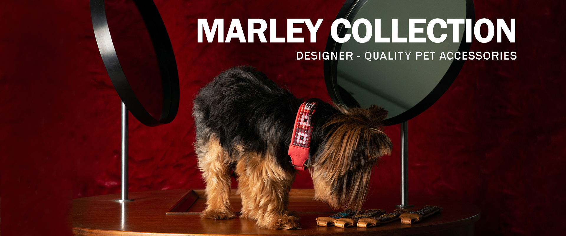 Marley Collection | Designer-quality pet accessories by zikos