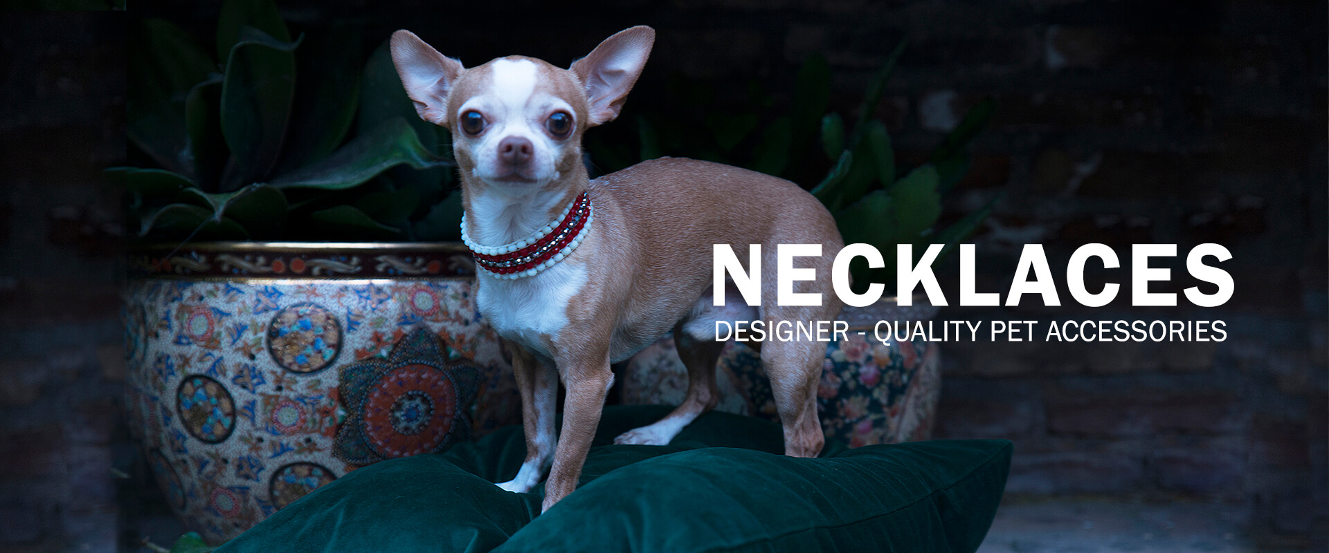 Necklaces | Designer-quality pet accessories by zikos