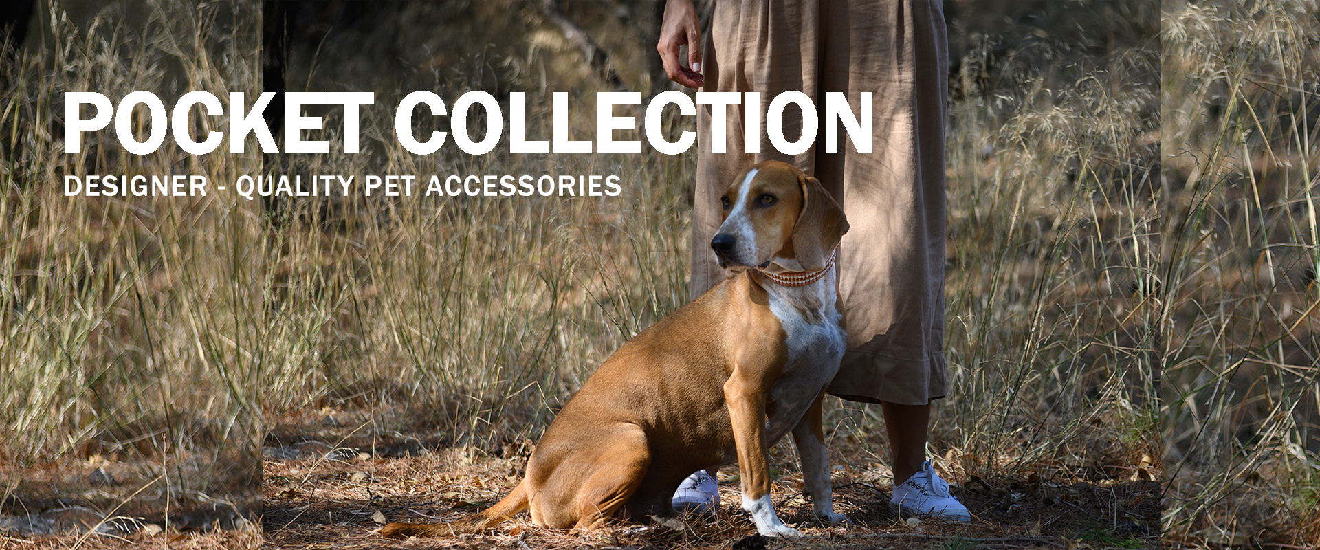 Pocket Collection | Designer-quality pet accessories by zikos