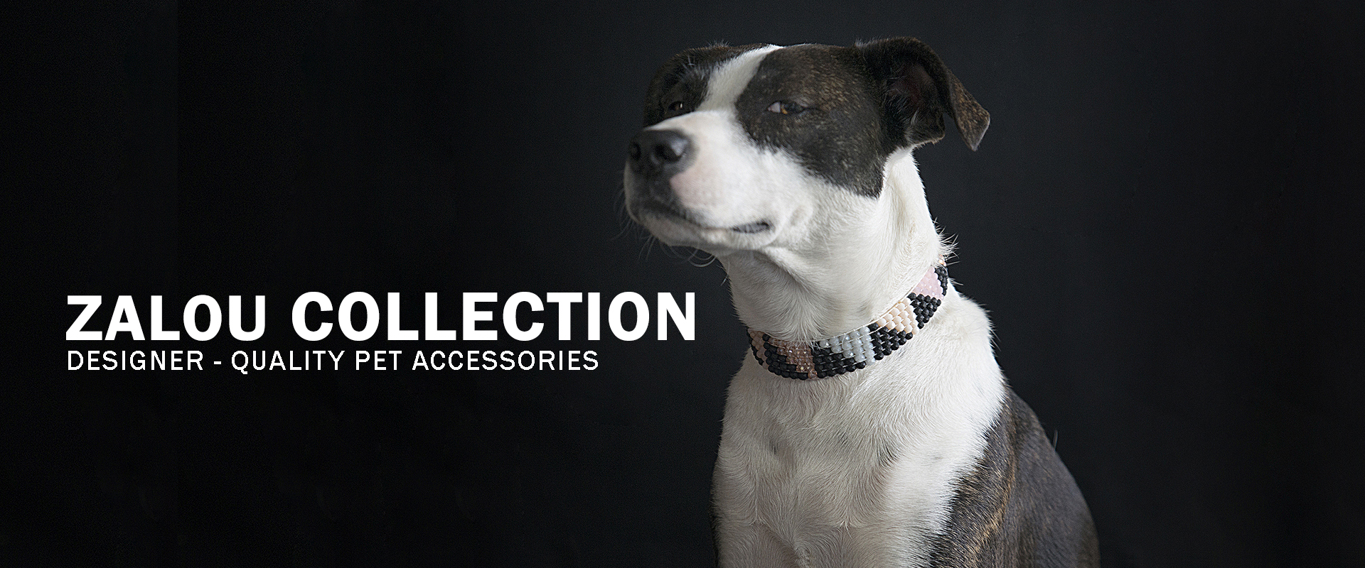 Zalou Collection | Designer-quality pet accessories by zikos