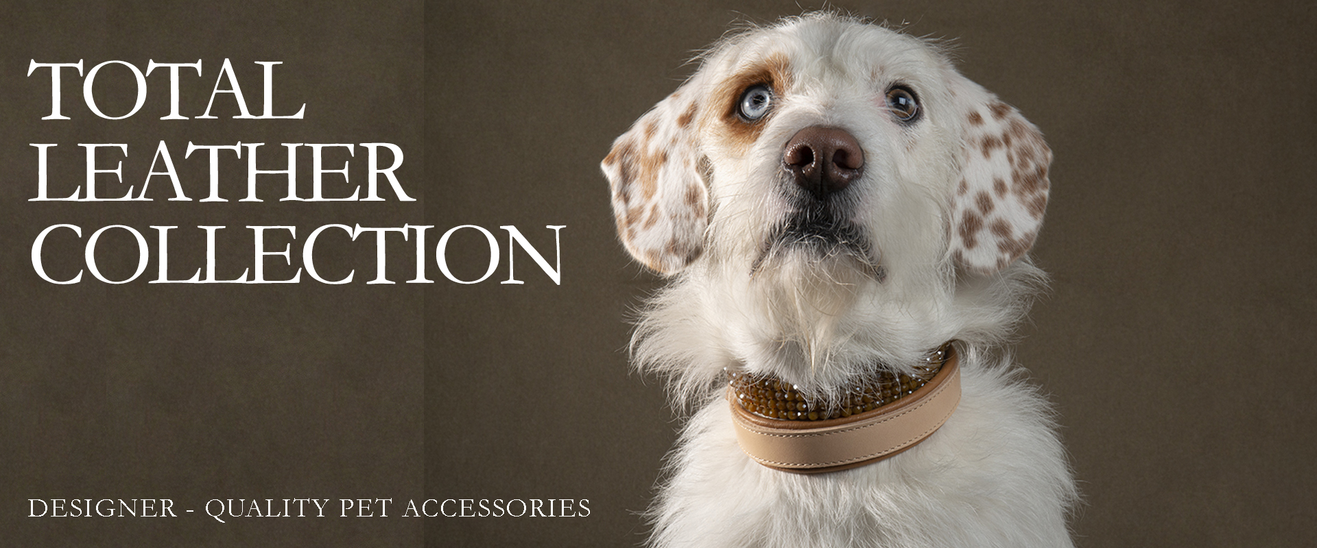 Total Leather Collection | Designer-quality pet accessories by zikos