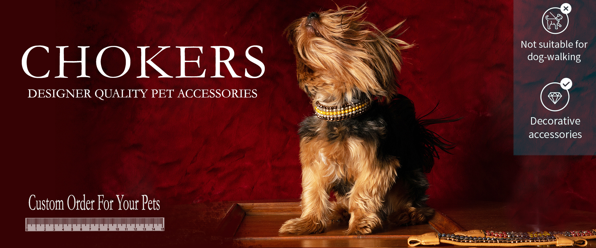 Chokers | Designer-quality pet accessories by zikos